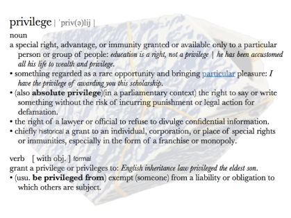 screenshot of the dictionary entry and definition of the word 'privilege' superimposed over the image of the ceramics vessel