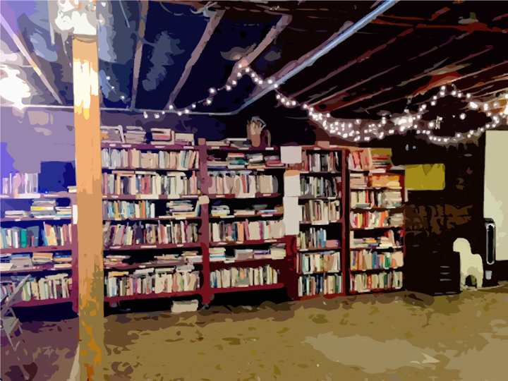 photo of the interior of the rhizome collective's inside books lending library