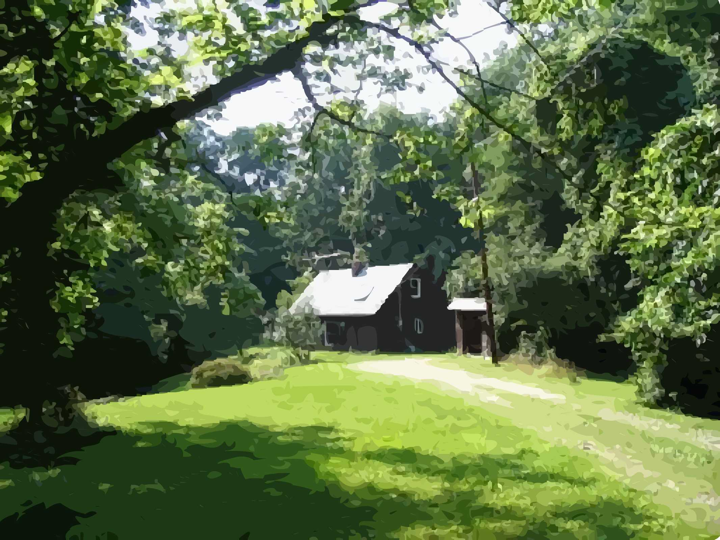 photo of small cabin in the woods surrounded by trees and a lawn
